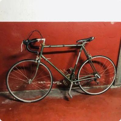 Bicicleta carretera Raleigh Reynolds 503 14 veloci