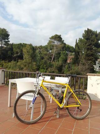 Bicicleta de montanya