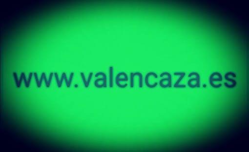 Cimbel paloma torcaz hueca de segunda mano por 6 € en Valencia en