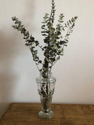 Jarron cristal con eucaliptus
