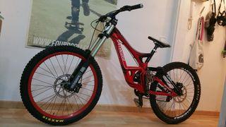 Bici descenco Specialized Demo 8