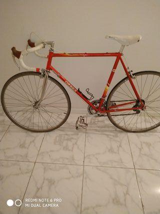 Bicicleta Orbea sierra Nevada