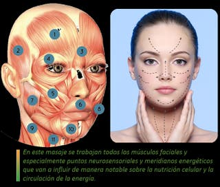 Lifting Facial Japonés (manual)