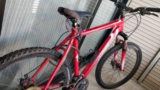 bicicleta montaña Specialized