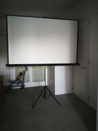 pantalla proyector 2x2 mts