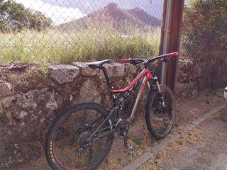 Bicicleta de enduro Specialized Stumpjumper FSR