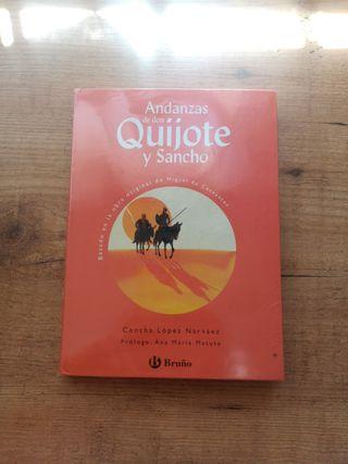 Libro de Don Quijote de La Mancha Versión Escolar