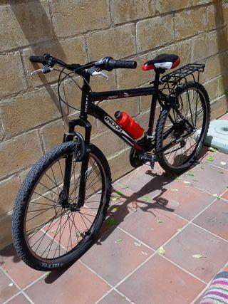Bicicleta montaña adulto