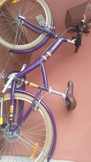 Bicicleta para chica/o