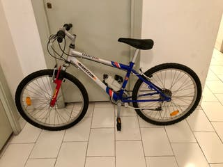 Bici MountainBike junior - ruedas de 21 pulgadas