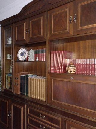 Mueble salón (librería)