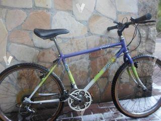 Bicicleta mountain bike orbea 24 economica