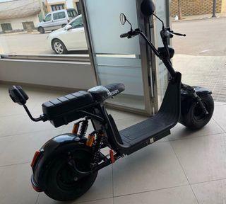 Scooter eléctrica 1000W.