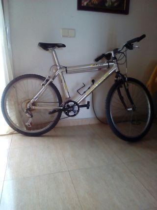 bicicleta económica