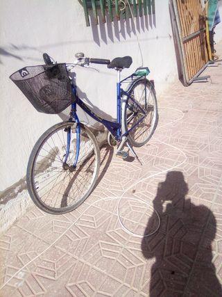 bici paseo 45 €