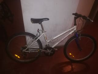 bicicleta comoda