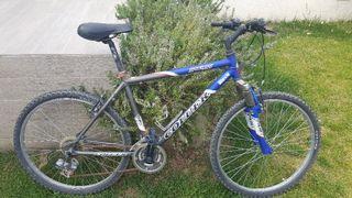 bici de adulto