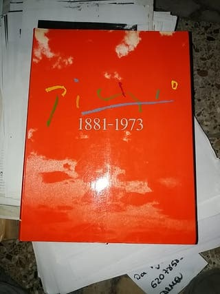 picasso 1881 1973