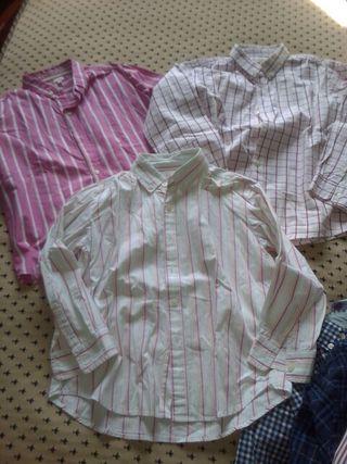 camisa gocco niño