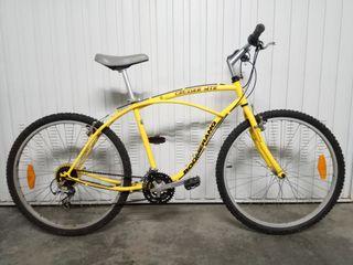 Bicicleta Tipo Cruiser