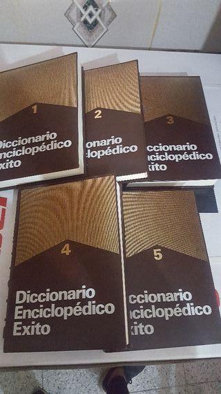 diccionario enciclopédico éxito