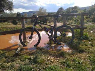 Bicicleta Giant talón 2017