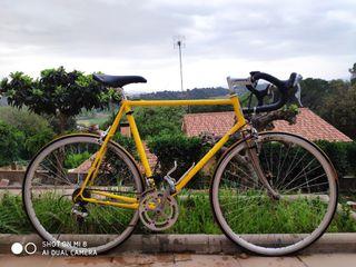 bicicleta Pinarello antigua