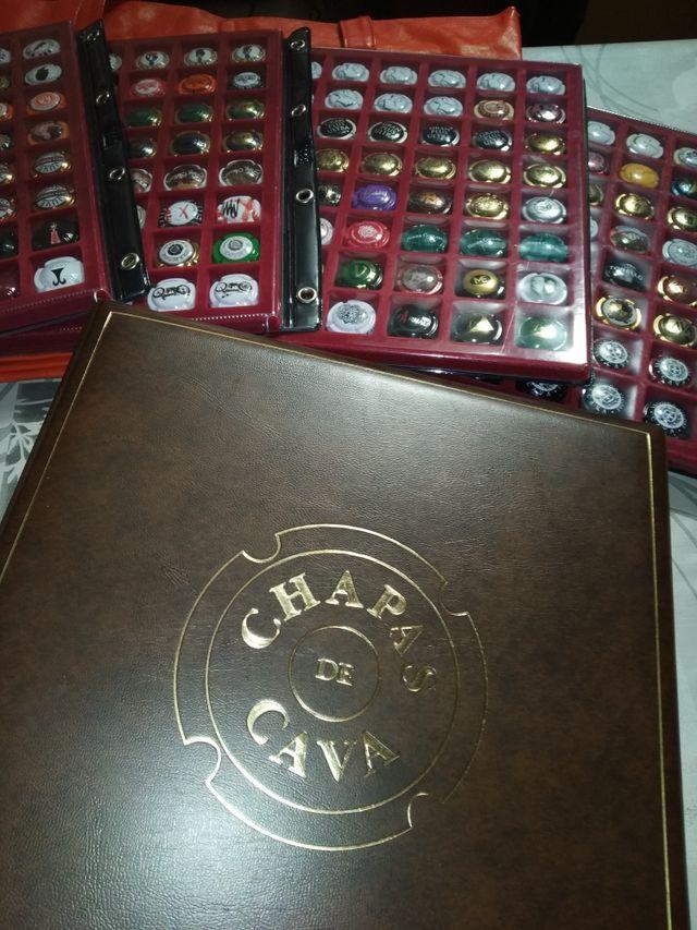 Colección 192 chapas de cava.