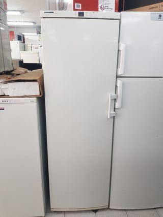 congelador semi industrial Lhiebherr