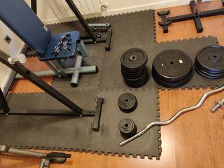 pesas - banco - gimnasio - musculación