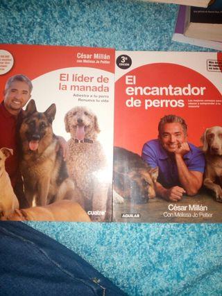 Pack 2 libros de César Millán