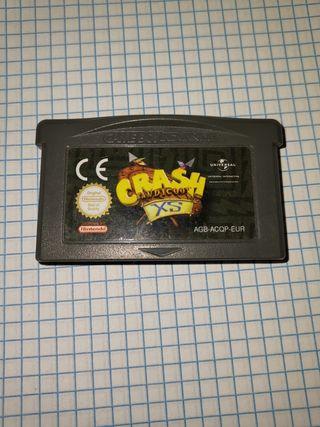 crash XS