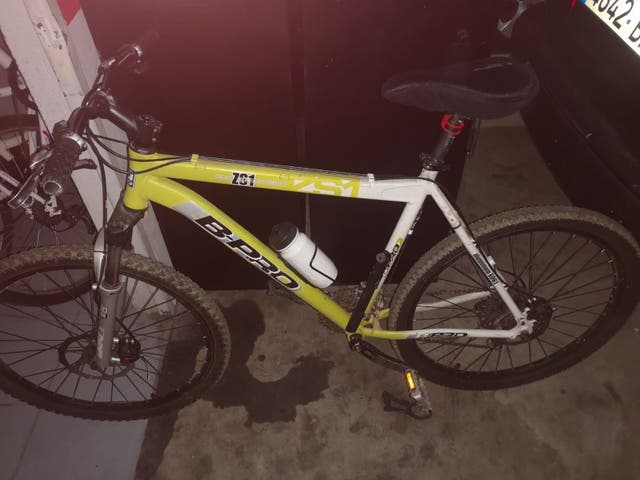 Bicicleta B-Pro ZS1