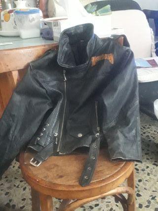 chaqueta cuero Harley davidson para niño
