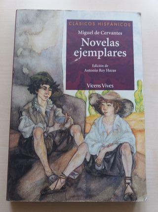 Libro de Lectura:Novelas ejemplares