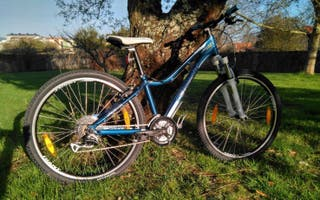 Bicicleta BTT REVEL GIANT