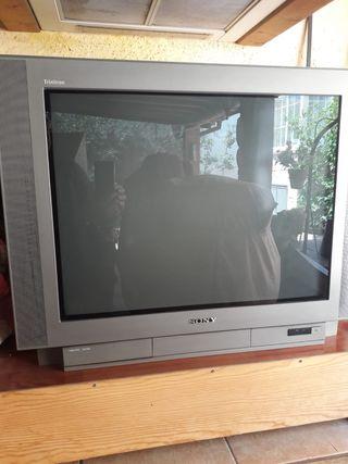 REGALO TELEVISIÓN