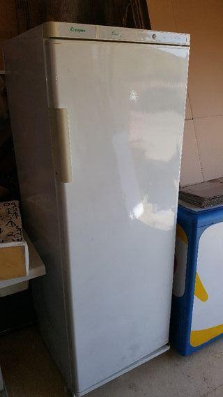 se vende congelador de 1700 aspes