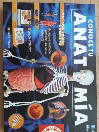 Juego Anatomía