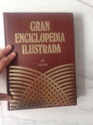 Gran Enciclopedia Ilustrasa URI zworikin