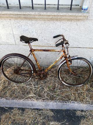 bicicleta bh de varillas