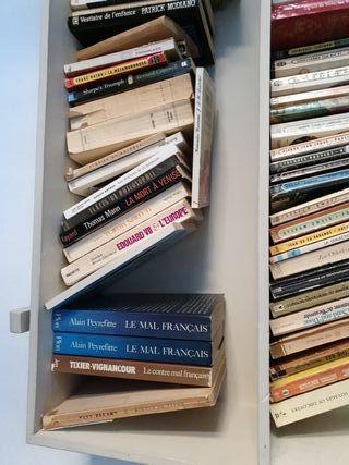 libros varios inglés y frances