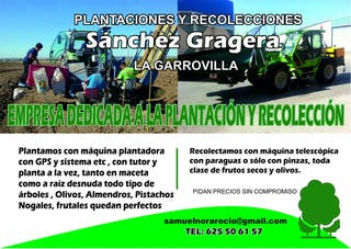 Plantaciones con gps