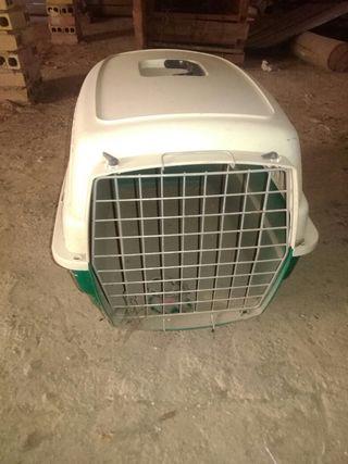 transportil para perros