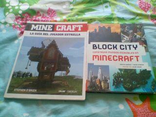 Libros Minecraft