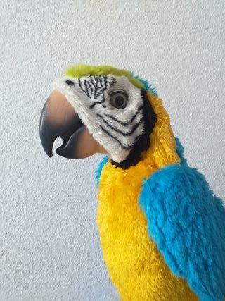 Loro Molón