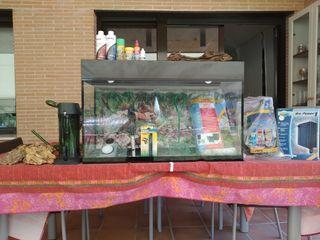Pecera / Acuario 100 Litros PACK OFERTA