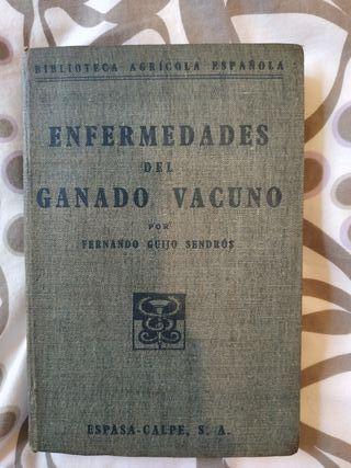 Libro antiguo Enfermedades del ganado vacuno