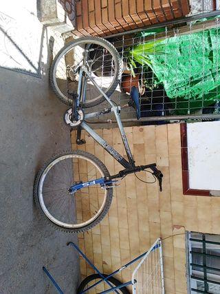 bicicleta para pasear y para montañas