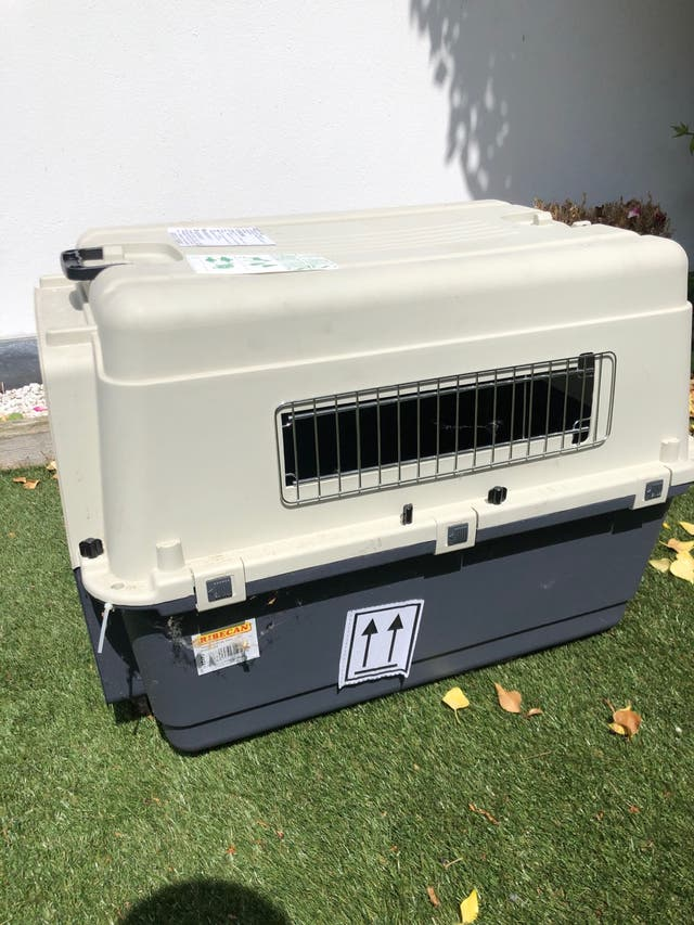 Pet transport box